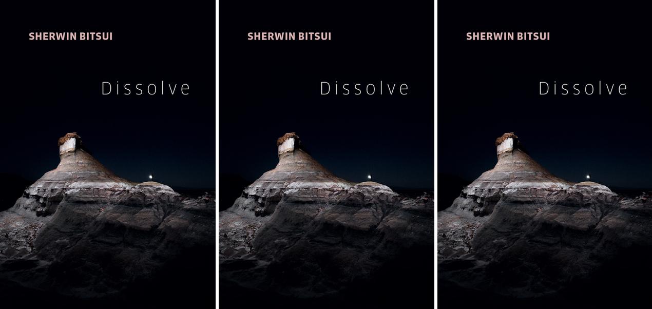 Cover art for Sherwin Bitsui's Dissolve