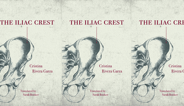 a drawing of an iliac crest on book cover in repeating pattern