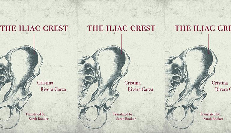 a drawing of an iliac crest