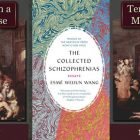 Covers of Ten Days in a Mad House and Collected Schizophrenias