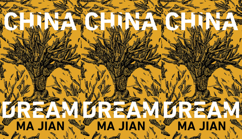 The cover of the book China Dream side by side.