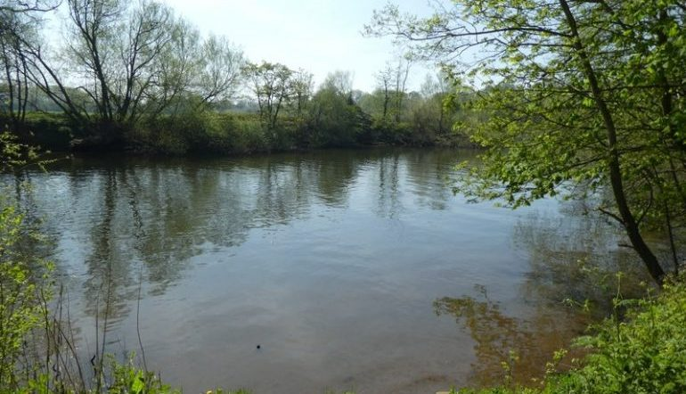 Banks of the River Ouse surrounded by trees and plants