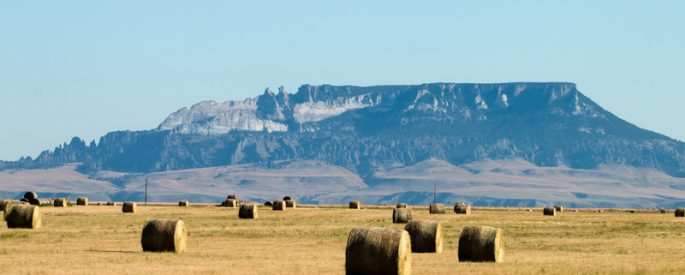 a photograph of hay bales with a mountain in the distance