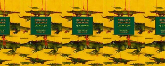 side by side series of the cover of notes of a crocodile which features about a dozen little crocodiles suspended by red strings