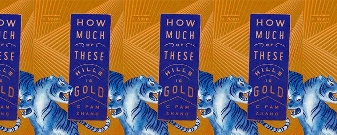 side by side series of the cover of How Much of These Hills Is Gold