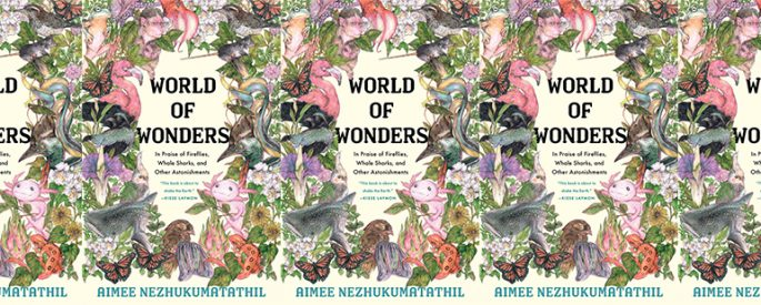 side by side series of the cover of World of Wonders