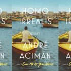 side by side series of the cover of Andre Aciman's Homo Irrealis