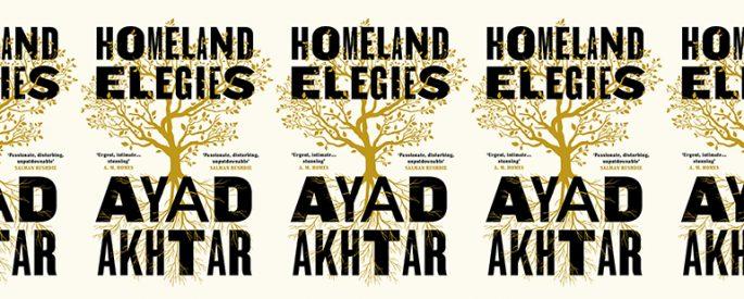 the book cover for Homeland Elegies