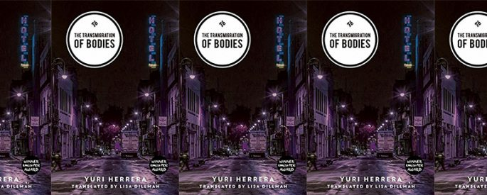 side by side series of the cover of The Transmigration of Bodies