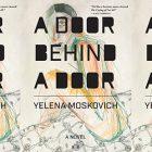 the book cover for A Door Behind a Door