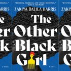 The Other Black Girl cover in a side by side series