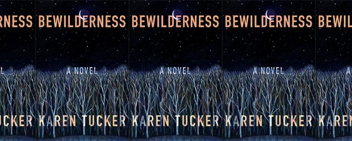 side by side series of the cover of Bewilderness