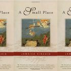 side by side series of the cover of A Small Place