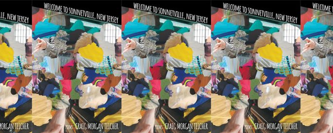 cover of Welcome to Sonnetville, New Jersey in a side by side series