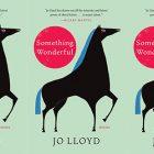 cover of Lloyd's Something Wonderful
